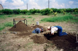 orchard digging3