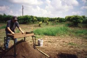 orchard digging1